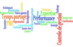 L'Externalisation du contrôle de gestion
